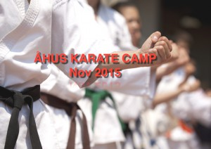 karatecamp2015.pdf